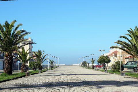 Avenida Praia de Cortegaça