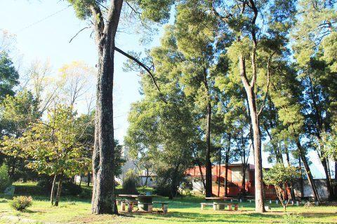 Parque de Merendas do Buçaquinho