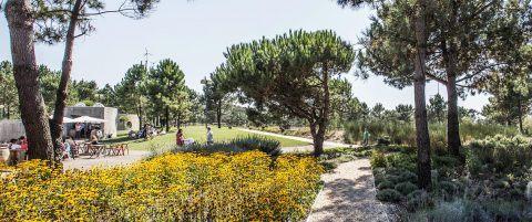 Parque Buçaquinho Cortegaça